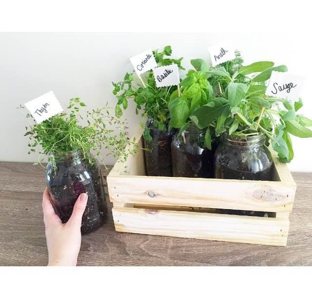 Diy La Jardini Re De Fines Herbes Sarah Couture